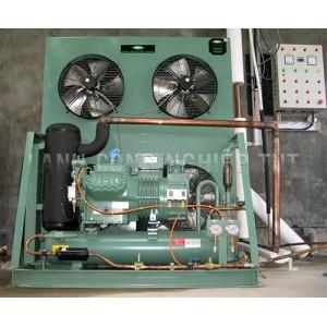 Cụm máy nén BITZER dàn ngưng giải nhiệt gió (LH)